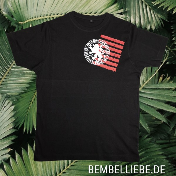 ECHT GEHESSISCH TShirt T-Shirt Hessen Löwe